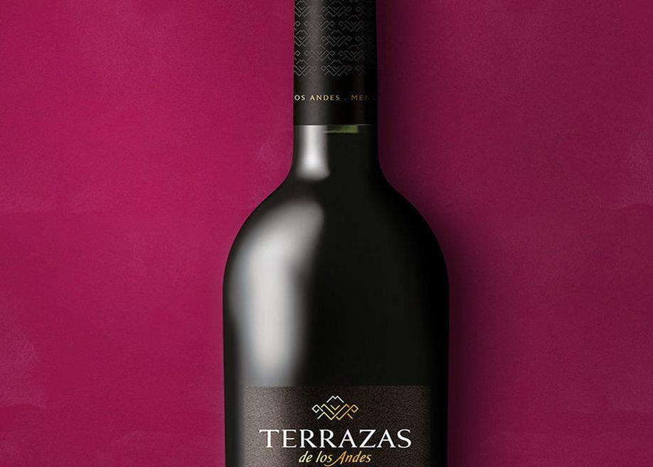 Terrazas De Los Andes Awwwards Nominee