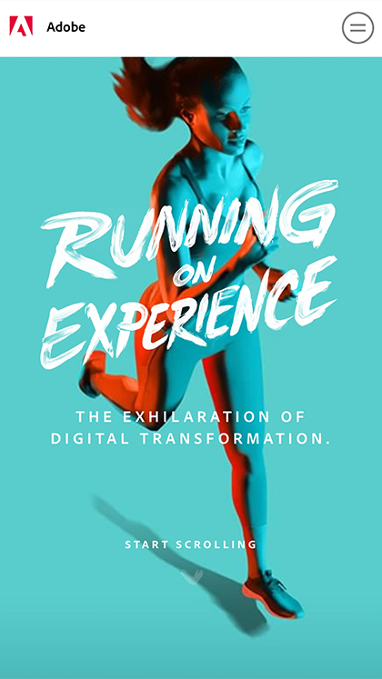 Adobe Digital Marketing Study