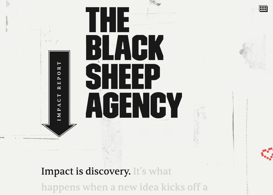 Black Sheep Impact Report