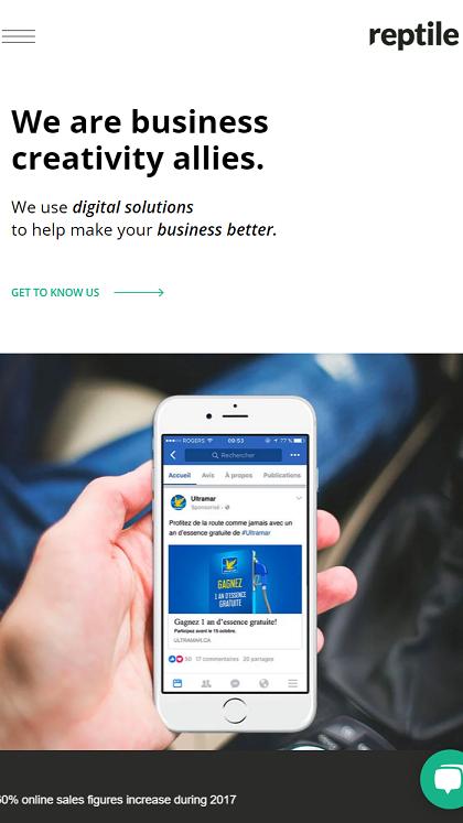 Reptile Digital Marketing