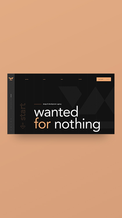 Wanted for Nothing