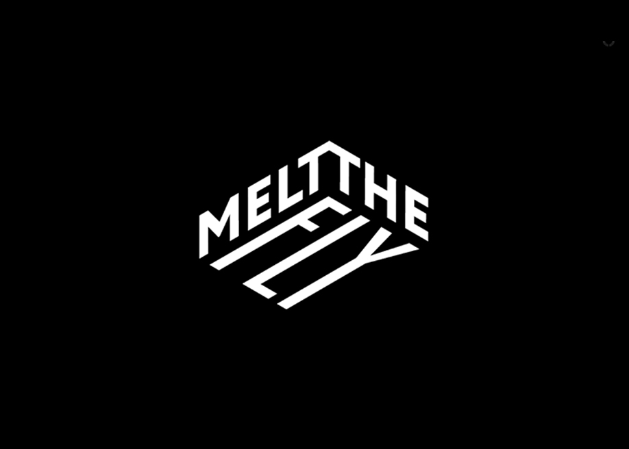 Melt the Fly - Awwwards Nominee