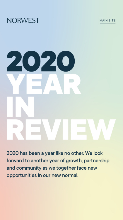 NVP 2020 Year in Review