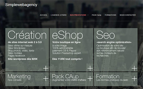 Simplewebagency