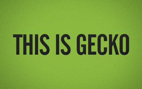 Gecko Imaging